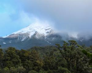 Mt Taranaki makes a quick appearance from behind the clouds as we walked along the Kaiauai Track....