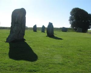 A few of the remaining standing stones at Avebury, in England. Most of the original 600 stones...