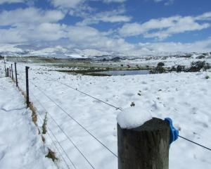 Snow near St Bathans. Photo by Lynda van Kempen.