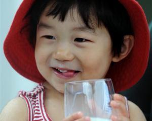 Allie Yin (2), of Dunedin, enjoys a glass of milk yesterday. Photo by Stephen Jaquiery.