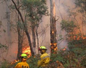Controlled burn-offs, like this one in bush near Ballarat, Australia,  and top right, get rid of...