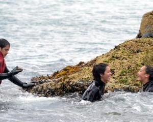 Cousins Barlow Anderson (16), Waiura Anderson (15) and Hinamoki Rewi (14) search for shellfish...