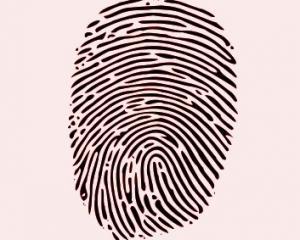 fingerprint_Wikimedia.jpg