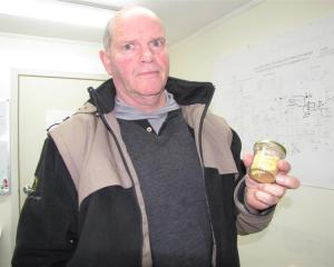 Glass Earth Gold chief executive officer Simon Henderson holds  3.4 ounces of gold recovered from...