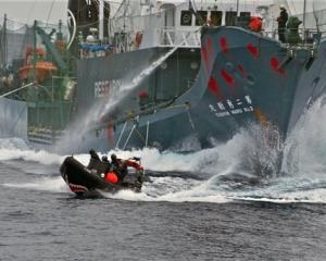 Japanese whaling vessel Yushin Maru No. 2 shoots its water cannons at the Sea Shepherd crew on a...