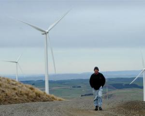 Mahinerangi farmer Richard Reid walks among TrustPower's Mahinerangi wind-farm turbines. Photos...