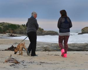Mother Caroline Hellyer (55) walks a dog with her foster daughter (15) in Brighton. Photo by...