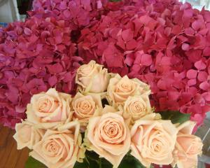 Old fashioned roses and hydrangeas from Carley Jones.