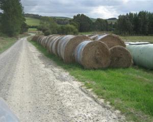 Proposed changes to the Waitaki District Council's roading bylaw will prohibit storing baleage...