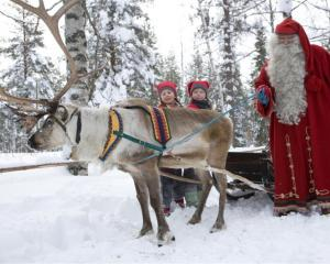 Santa and his reindeer and young helpers make a vivid impression at their village in northern...