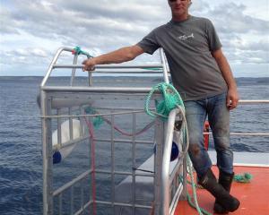 Shark Dive NZ director Peter Scott, of Dunedin, does not believe cage diving is encouraging...