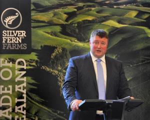 Silver Fern Farms chairman Rob Hewett. Photo by Linda Robertson.