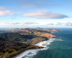 The Department of Conservation and Dunedin City Council are considering if and where they should...
