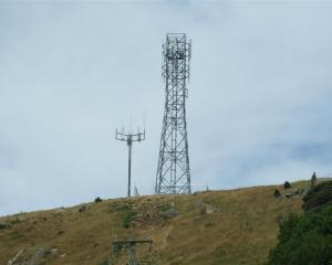 The new 25m Vodafone tower near Owaka. Photo by Helena de Reus.