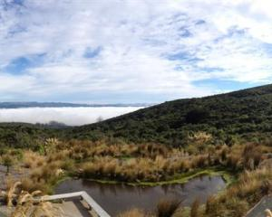 The Orokonui Ecosanctuary. Photo by Craig Baxter.