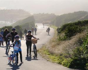 Walkers, runners, dogs, cyclists, roller-bladers and skate boarders, pictured last year on John...