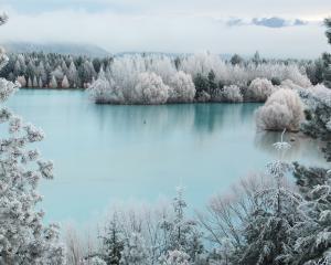 frost_3.jpg