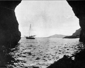 "The ""cavern of death'' on the Auckland Islands, in which the General Grant was wrecked and sunk...."
