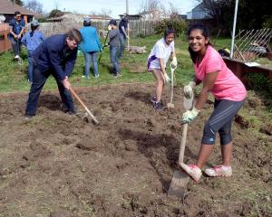 University of Otago student volunteers (from left) Andrew Martin, Sandy Tran and Dona Joseph work...