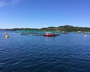 A salmon farm in Norway (above) visited in June by Venture Southland enterprise and strategic...