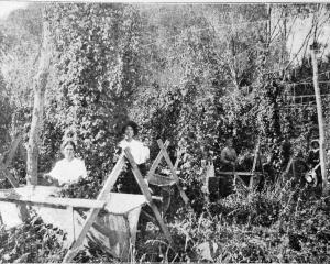 Hop-picking at Riwaka, Nelson District. - Otago Witness, 13.9.1916.