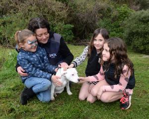 Kaiah Hiko (6), Otago SPCA dog manager Lisa Gerard, Zita (7) and Poppy Lamare (9) meet  Pearl, a...