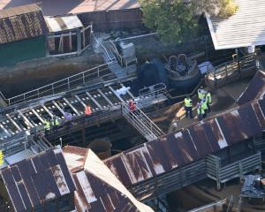 Emergency services at the scene after the accident at Dreamworld.Photo Reuters