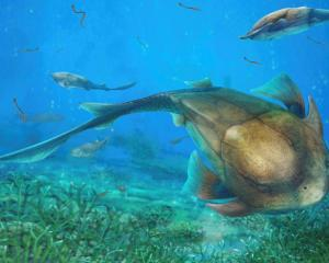 Illustration shows the fish called Qilinyu that lived 423 million years ago during the Silurian...