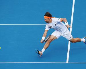 David Ferrer playing in Auckland in January 2016. Photo: Getty Images