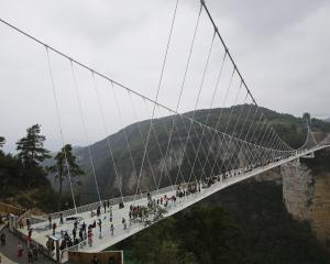 The bungy operation ins planned for the glass-floor suspension bridge in Zhangjiajie in south...