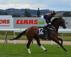 Little Haast should move out of the maiden grade pretty quickly. She starts her new campaign at...