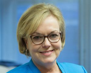 Judith Collins. Photo NZ Herald