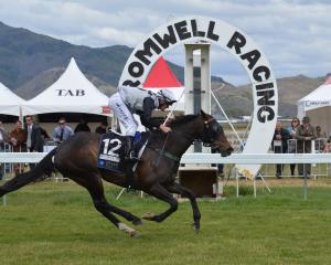 Missteeflying gallops away to provide Riccarton trainer Andrew Carston with his third win of the...