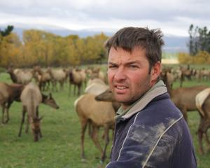 Elk and Wapiti Society president John Falconer. Photo from EWS.