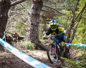 Joe Nation weaves his way through the forest on his way to winning the Three Peaks Enduro race...