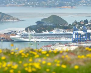 The cruise ship Diamond Princess berthed in front of Flagstaff Hill, at Port Chalmers, earlier...