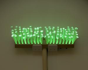 Fibre Optic Broom #1 (2009), by Eddie Clemens.