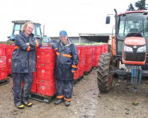 Totara potato-grower Peter Armstrong's staff at the Totara farm, Bayard Ferguson and Jessica...
