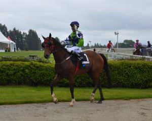 Wingatui-based apprentice Sha Wahab salutes the judge after riding Keep The Courage to his first...