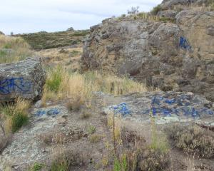 A series of tags scrawled on rocks at the entrance to Ophir. Photo by Jono Edwards.
