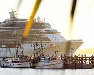 The cruise ship Celebrity Solstice  passes Careys Bay as it arrives in Otago Harbour yesterday....