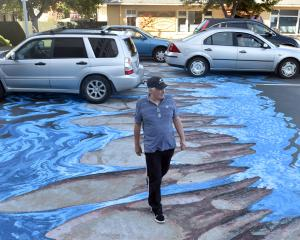 David Cockerill walks across the 3-D ''river crossing'' in North Dunedin yesterday. Photo: Peter...