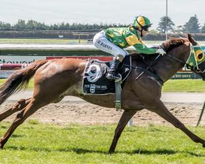 Fascinate and rider Courtney Barnes score a hat-trick of wins in taking out the Southland Stakes...
