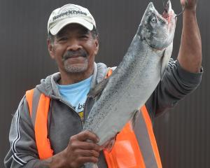 Niua Hakai, of Dunedin, with the winning 4.16kg salmon he caught from the wharf on Saturday. It...