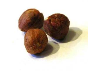 Hazelnuts are being considered for the proposed community orchard plantings in Northeast Valley....