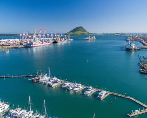 Port of Tauranga's half-year report underpins its claims to become the first New Zealand port to...