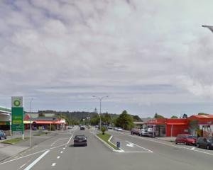 The driver reportedly stalled the rental car before pulling over on the other side of the road,...