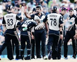 Twenty20 would be the format targeted to get into the Olympics. Photo: Getty Images