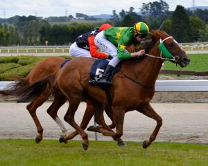 Coulee and jockey Jacob Lowry will reunite for a tilt at back-to-back success in tomorrow's ...