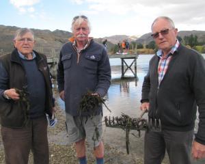 Guardians of Lake Dunstan members (from left) Andrew Burton, John Wilson and Howard Anderson, all...